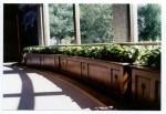Visitors center planter boxes
