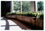 Visitors center planter boxes