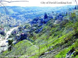 2014 city_of_david_east