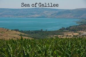 2014 Sea of Galilee