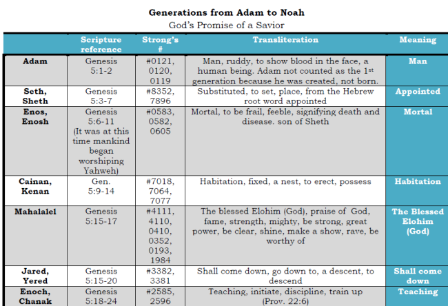 Generations from Adam to Noah 1